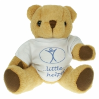 Honey teddy bear (25cm)